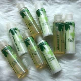 Bath and Body Works White Citrus Shampoo & Conditioner Duo