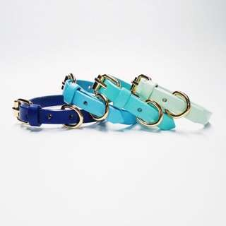 🚚 Leather collars for dogs and cats