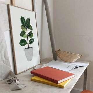 【 現貨 】菠蘿選畫所 – 盆栽意趣-橡膠樹 北歐/ 插畫/ 攝影/ 裝飾畫/ 複製畫/ painting
