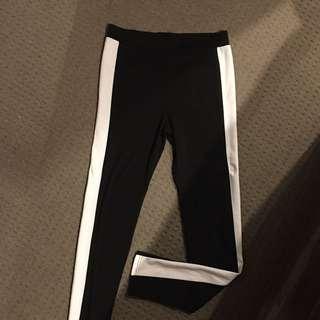 Dotti High Waisted Pants