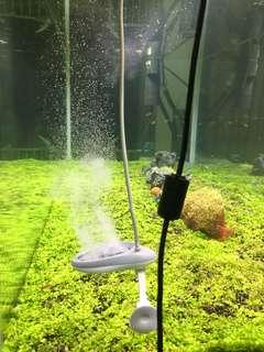 Korea twinstar nano plus algae killer fish water plant aquarium