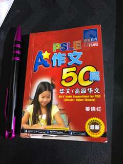 PSLE 50 model chinese composition