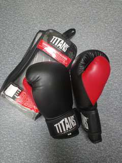 Titans Boxing Gloves (14oz)