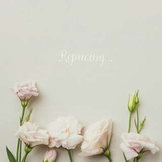 Repricing 💕