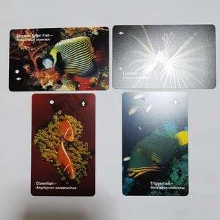 MRT Cards - Ocean
