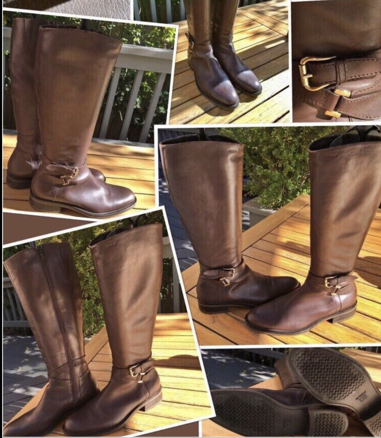 """""""GEOX""""LIKE NEW Stunning all leather riding boots in dark chocolate brown with pale gold buckles in size 37(fits 7-71/2)(fits a narrow foot)"""
