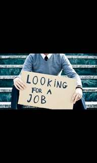 I am looking for job!