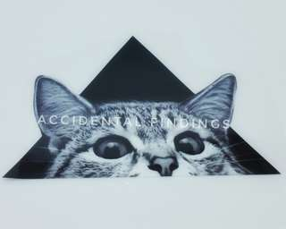Iron-on decal Cat