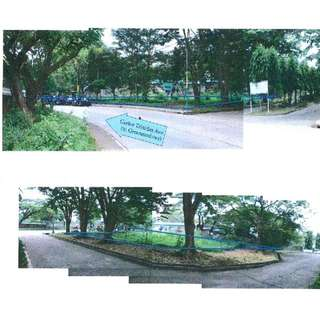 For Sale 2,366sqm Lot in Carlos Trinidad Ave Salitran Dasmarinas City Cavite
