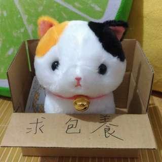 玉小柴*【送紙箱】AMUSE日本正版短腿貓《花生》(玩偶/布偶/娃娃/花貓)