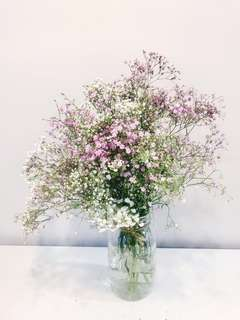 Baby breath bouquet/ baby breath arrangement