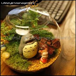 20cm Terrarium Round Glass Container/Pot/Bowl with Lid (Fish Hydroponic Aquarium)