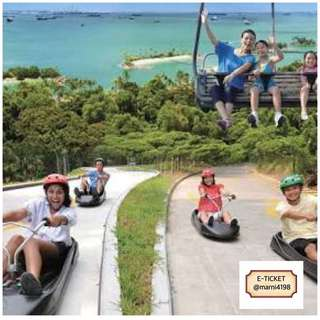 Luge and Skyride Open Date Etickets