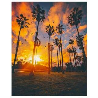 California sunset painting ideas for made to order