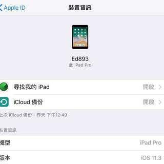 iPad Pro 10.5 256g LTE 版