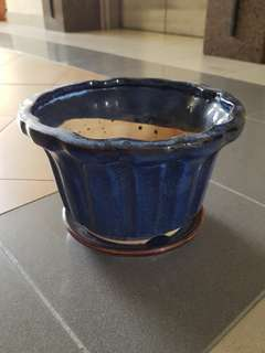 Ceramic Blue Plant Pot