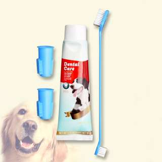 Pet Dog Dental Care Kit with Toothpaste and Toothbrush Set