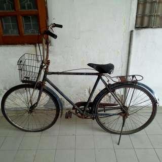 Bicycle Vintage 1