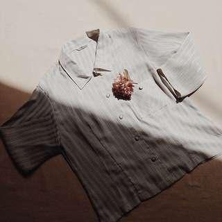 Button down shirt (silk stripes)