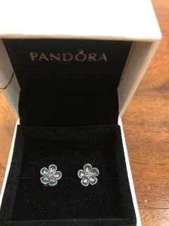 Pandora Daisy Earring (RP: RM189)