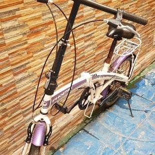 Phoenix Foldable Bike
