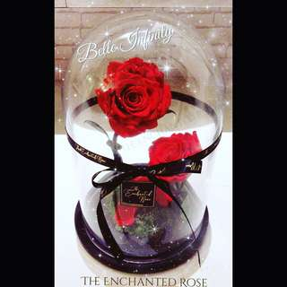 Mother's Day Roses/Flower/Gift/Bouquet ~ Preserved Rose last up to 5 years w/o sunlight & water