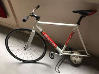 fixed gear bianch
