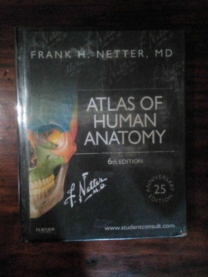 Atlas Of Human Anatomy By Frank H Netter 6th Edition Books Books