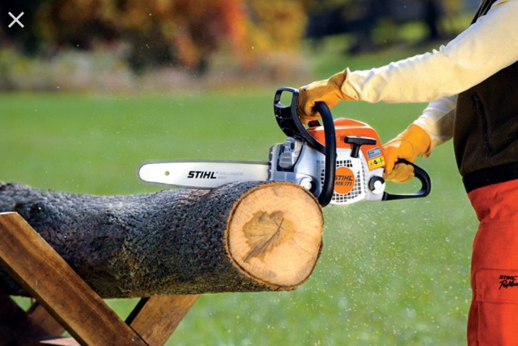 Tree Cutting or Tree Trimming From $50