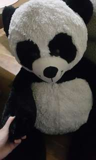 Panda Bear!! (RUSH!! Negotiable)