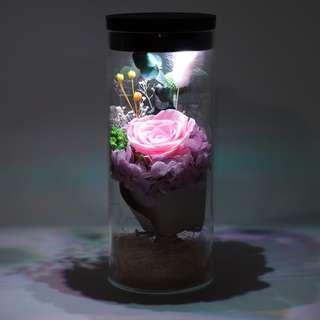 Premium LED Glass Real Flower Display Bell Jar Dome Immortal Preservation Love shape Glass Jar Rose Colour Valentine Rose