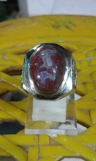 Red lumut agate. Pictorial white dragon