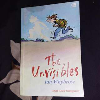 Novel The Unvisible