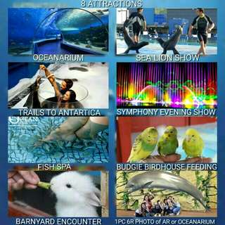 Manila Ocean Park Discounted Tickets
