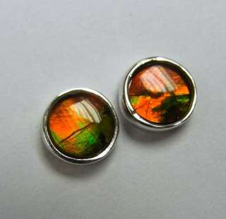 Oval ammolite triple sterling silver earring (6mm)