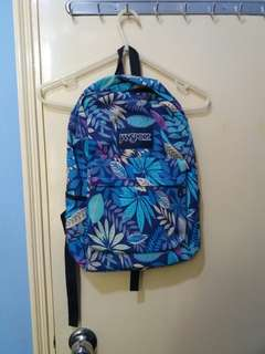 Backpack (not real)