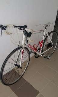 Garyfisher AAIL Roadbike