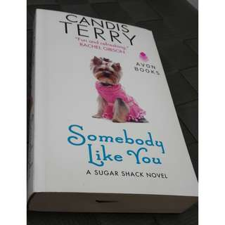Someone Like You by Candis Terry