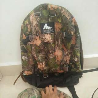 bag pack GREGORY cottonwood camo