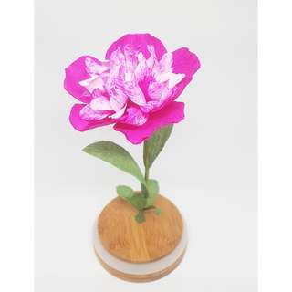 Peony in a glass
