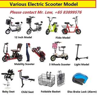 Various Electric Scooter Model