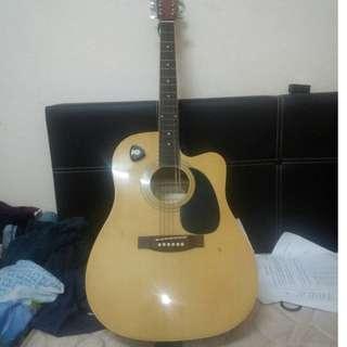 Santa Cruz electro acoustic guitar