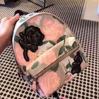 Authentic Coach women's backpack