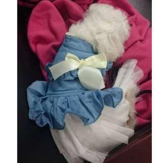 韓版牛仔婚紗禮服蓬蓬裙 寵物婚紗 M size 台中可面交 誠可議