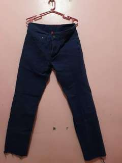 Uniqlo blue pants