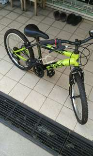Aleoca 20inch bicycle