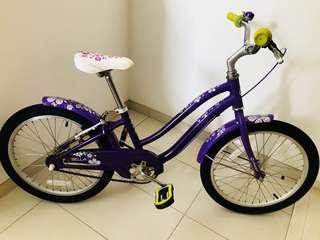 Giant Girls Bike