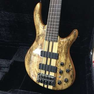 Cort A5 Custom SP 5 String Bass Guitar
