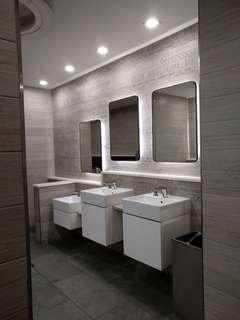 Vanity counter in toilet