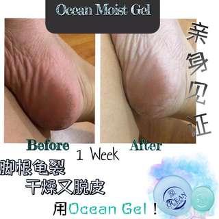 Ocean Moist Gel (Sea Cucumber & Aloe Vera) 75ml